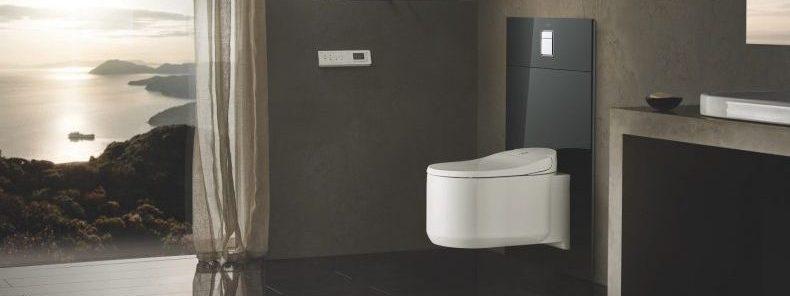 vas de toaleta cu bideu incorporat si uscator