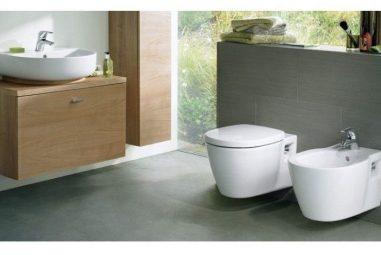 Cum alegi cel mai bun vas de toaleta